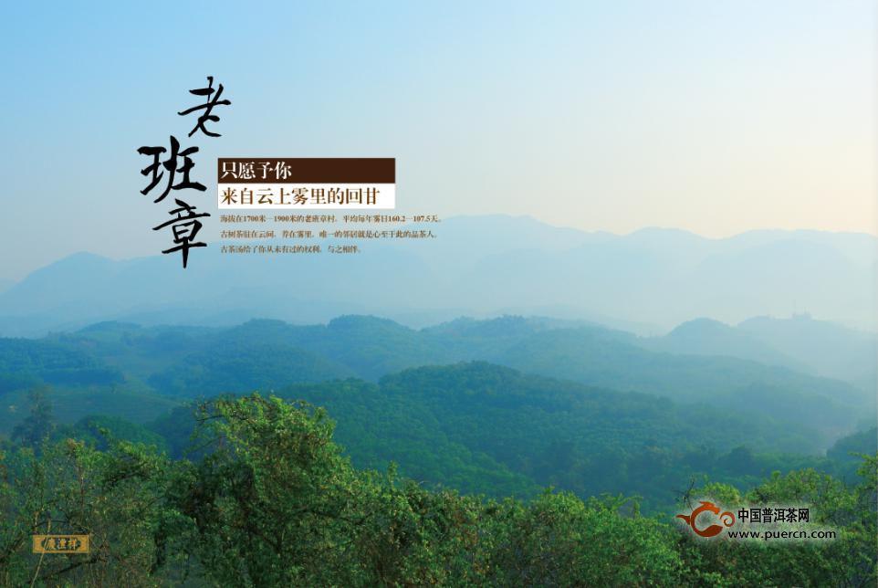 七彩云南庆沣祥2015春古茶即将上市