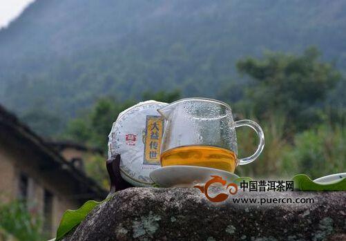 普洱茶品大益传世与紫大益价格波动行情