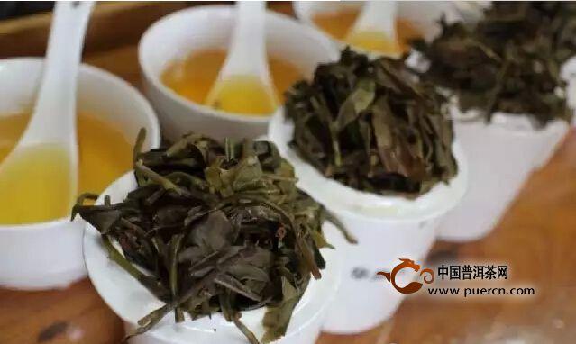 2009年——2014年岁月知味麻黑古树茶审评