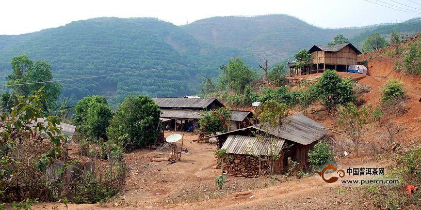 普洱茶村寨之小曼乃自然村