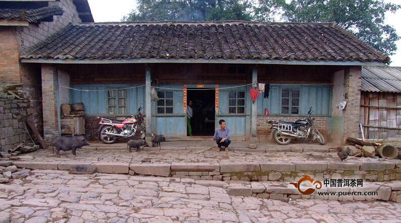 勐腊县象明彝族乡倚邦村人文地理