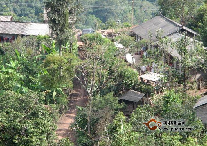 普洱茶村寨之曼拱一村