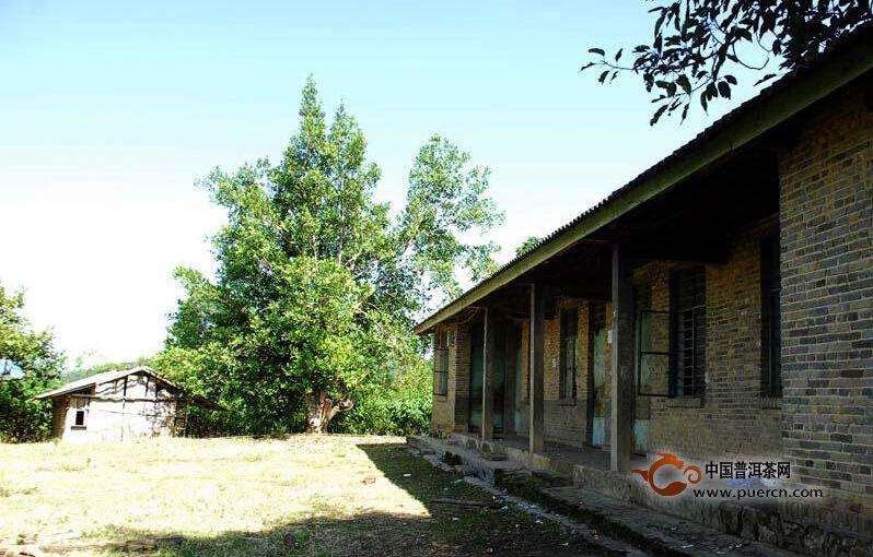 普洱茶村寨之毛娥老寨村