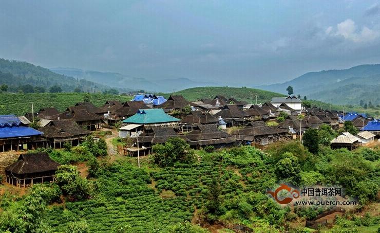 普洱茶村寨之布朗山帕点村