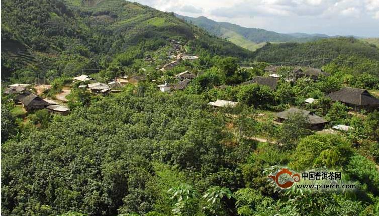 普洱茶村寨之巴亚老寨村