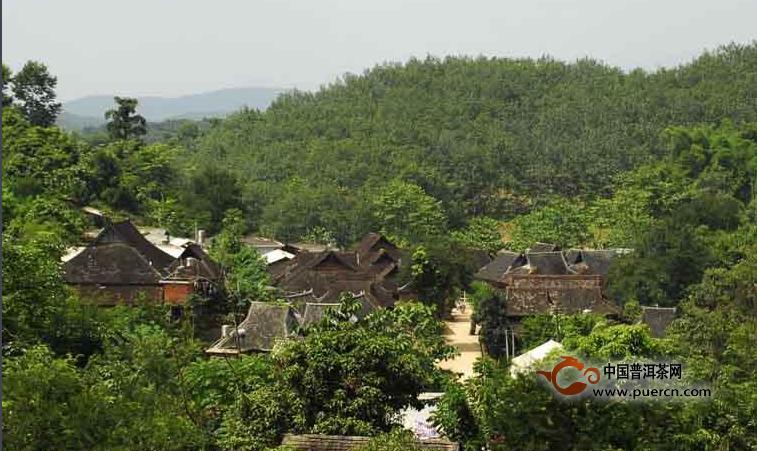 普洱茶村寨之巴奎村