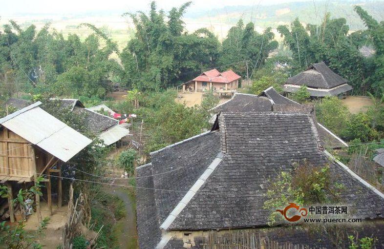 普洱茶村寨之曼弄新寨村