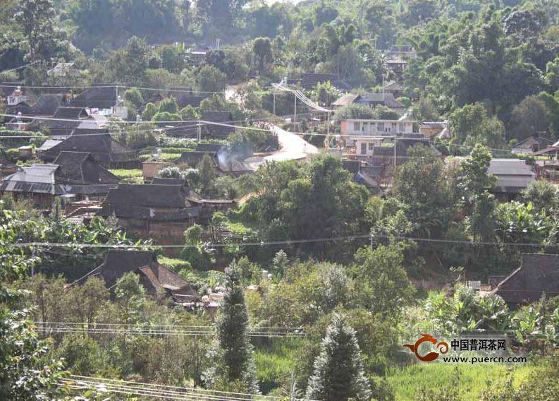 普洱茶村寨之曼窝科村