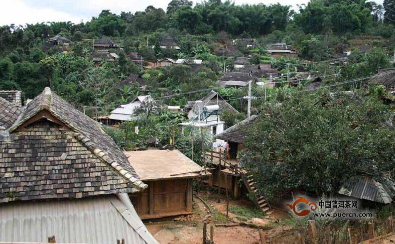 普洱茶村寨之曼加干边村