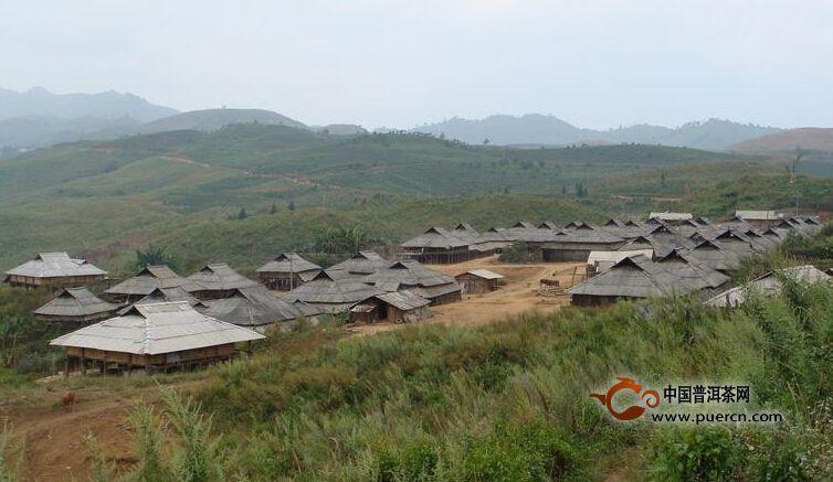 普洱茶村寨之坝卡囡村