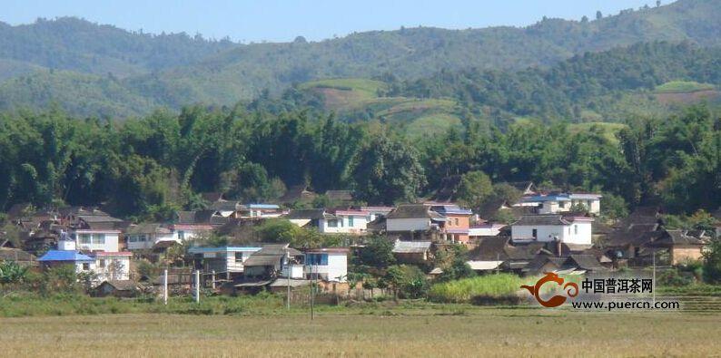普洱茶村寨之曼贺纳自然村