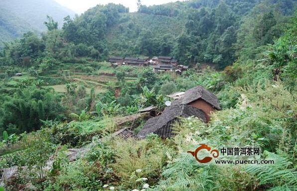 景谷南板村介绍--普洱茶产地