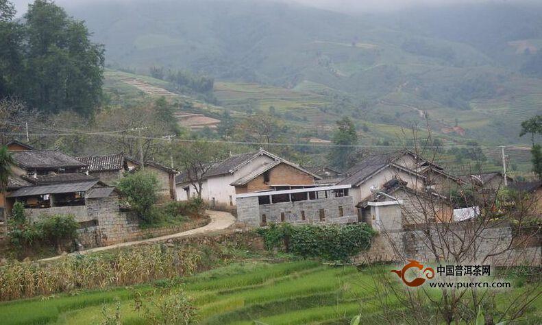 白花树自然村村情概述
