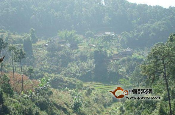 大坟山自然村村情概述