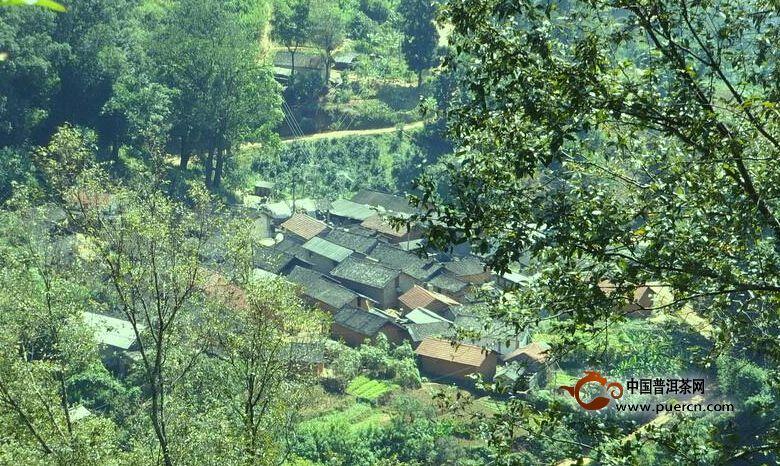 怕奔自然村概述--普洱茶产地