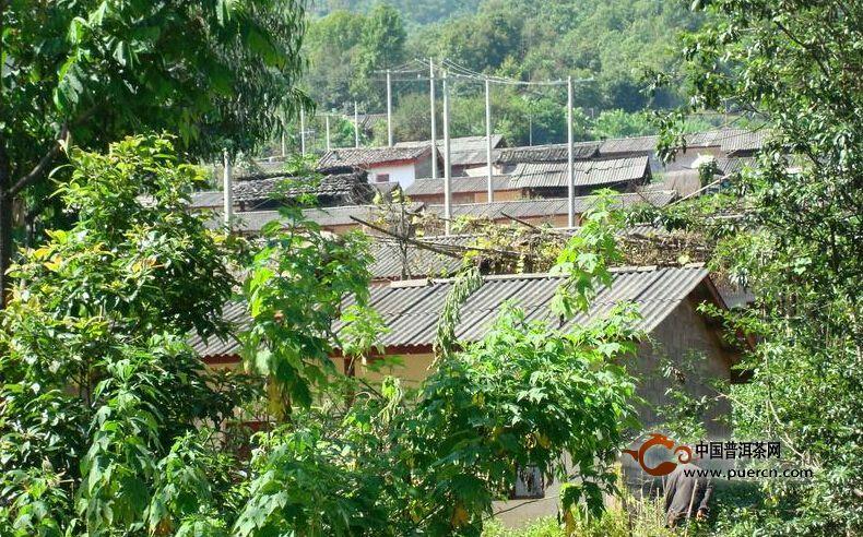 河边寨自然村概述--普洱茶产地