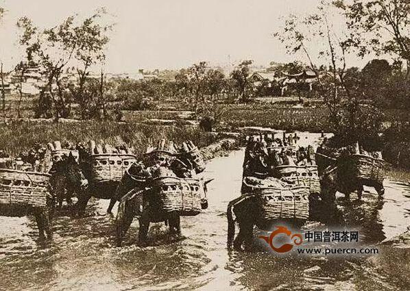 【特别推荐】深度解析清代普洱茶与滇东南多民族社会(权威版)