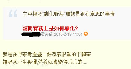 【喝茶话题】:如何驯化野生茶树?
