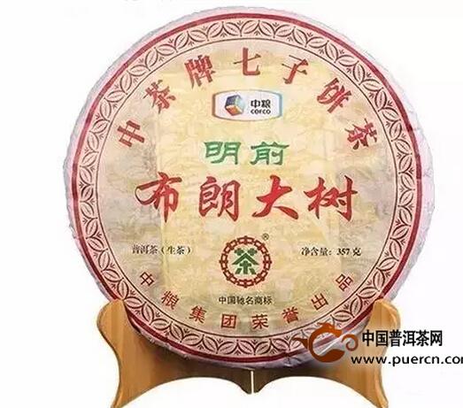 .2013中茶牌明前布朗大树