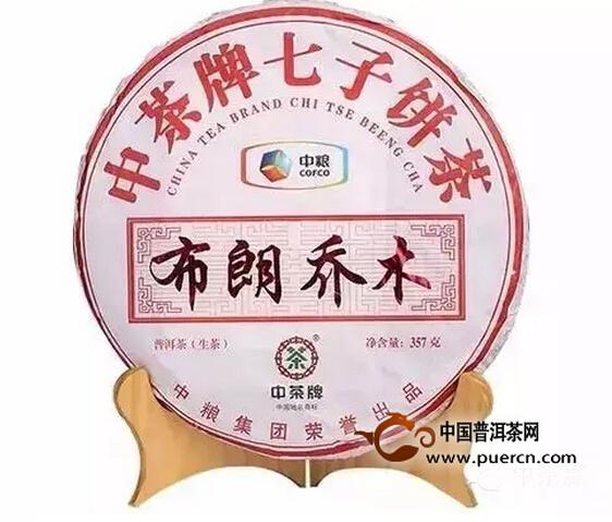 2013中茶牌布朗乔木