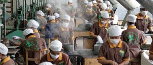 详解普洱茶熟茶生产工艺流程 - 普洱茶制作,普洱茶的