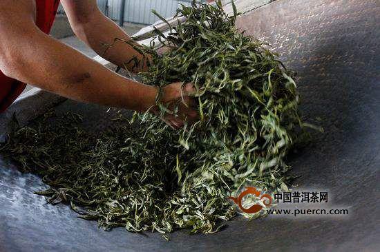 一名记者和一片树叶的情感之旅:普洱茶如何从树叶到茶汤