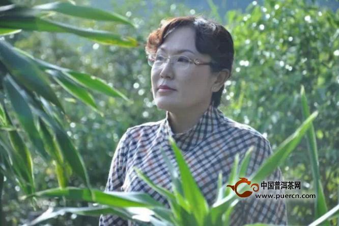 巾帼茶人赵华琼:濮女茶和她四十年的制茶岁月(上)