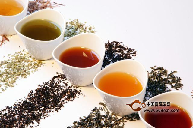 2016中国茶叶大数据:普洱茶生熟茶区别对比