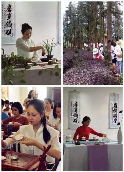 云南省农业科学院茶叶研究所2016年9月初级、中级茶艺师培训鉴定招生计划