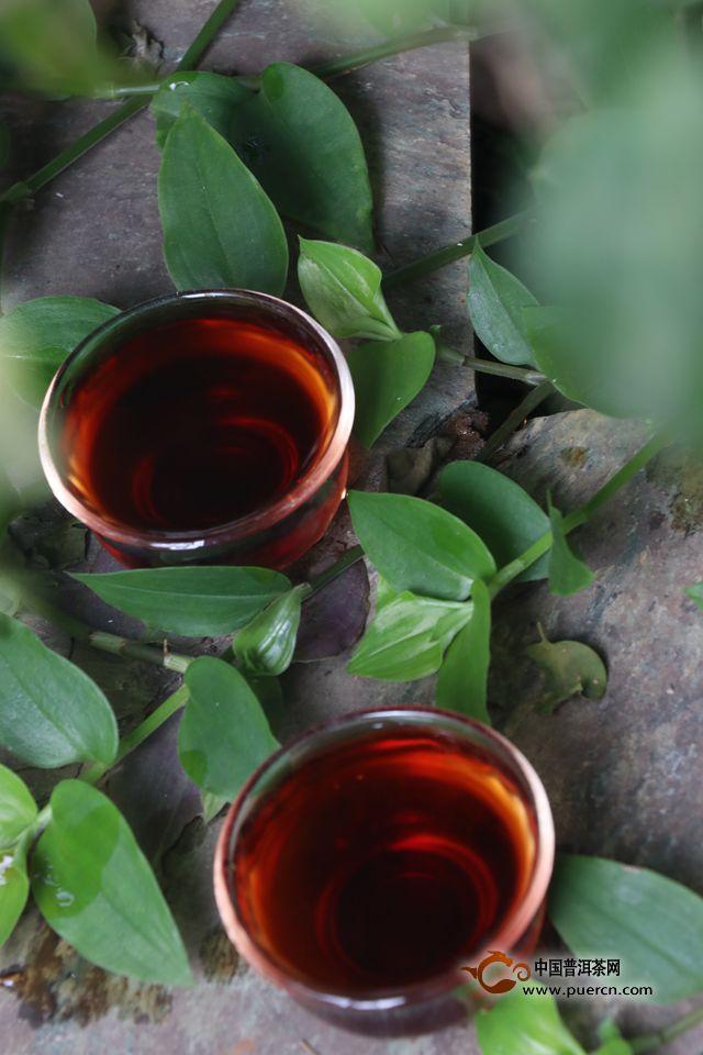 白马非马:勐海茶的发迹史