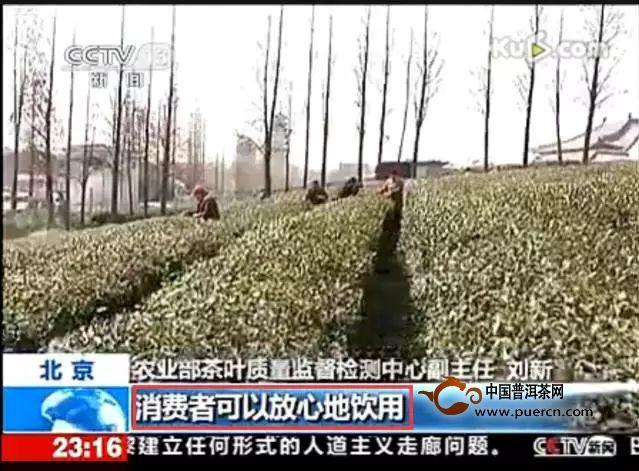 """专访陈宗懋:院士怒辟谣""""中国茶叶98%都有农残"""""""