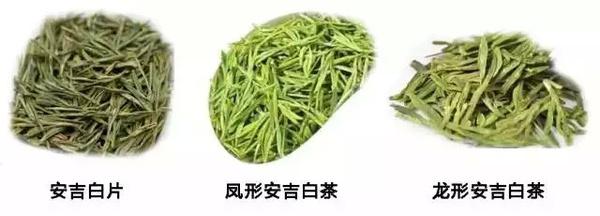 安吉白片和安吉白茶有什么样的区别