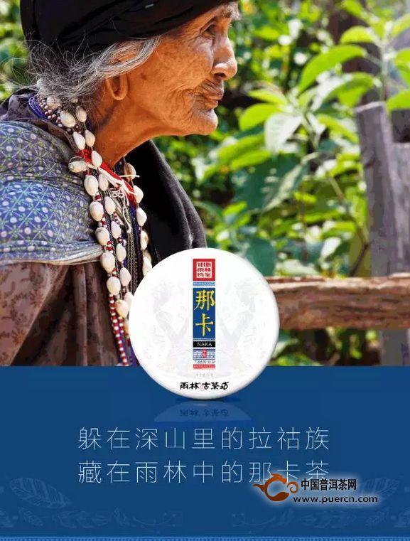 【雨林古茶】品味藏在原始雨林中的千年时光