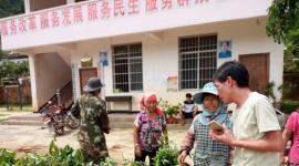 勐海布朗山乡农业中心发放覆荫树苗,创建卫东生态茶园