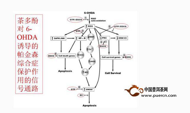 电路 电路图 电子 教学图示 原理图 640_382