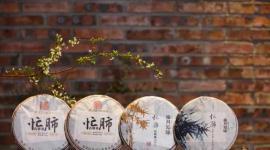 忙肺古树茶 | 云南省茶科所评为省级优良品种的优质茶品