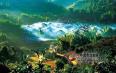 云南省人民政府办公厅关于印发云南省茶产业发展行动方案的通知