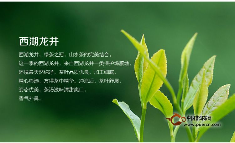 """请问中国茶叶的名字中带""""白""""字的茶都有哪些呢。。烦请指教"""