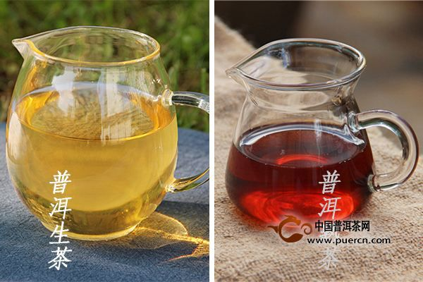 什么是生茶,什么是熟茶,他们是普洱茶吗?