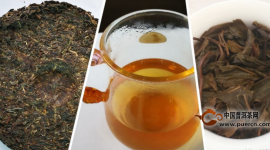 【茶友聊茶】果香浓郁、茶汤柔顺——拔玛,南糯山最好的茶