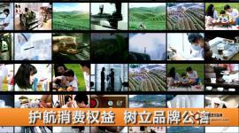 全产业链把控,成就国饮中茶