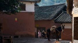 滇藏茶马古道:茶叶运输大通道
