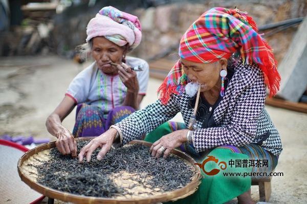 普洱茶投资景迈山茶如何?