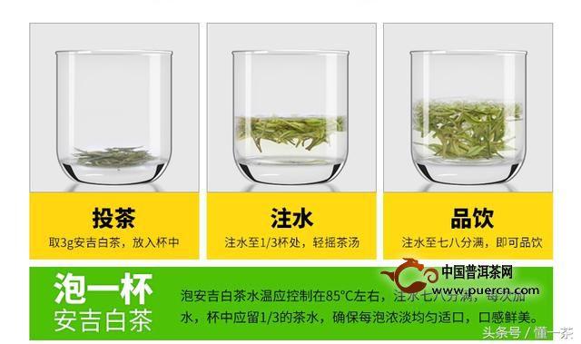 安吉白茶冲泡方法及正确步骤