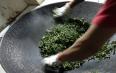 寻找真正的冰岛味:炒茶师傅正在对冰岛老寨春茶进行杀青