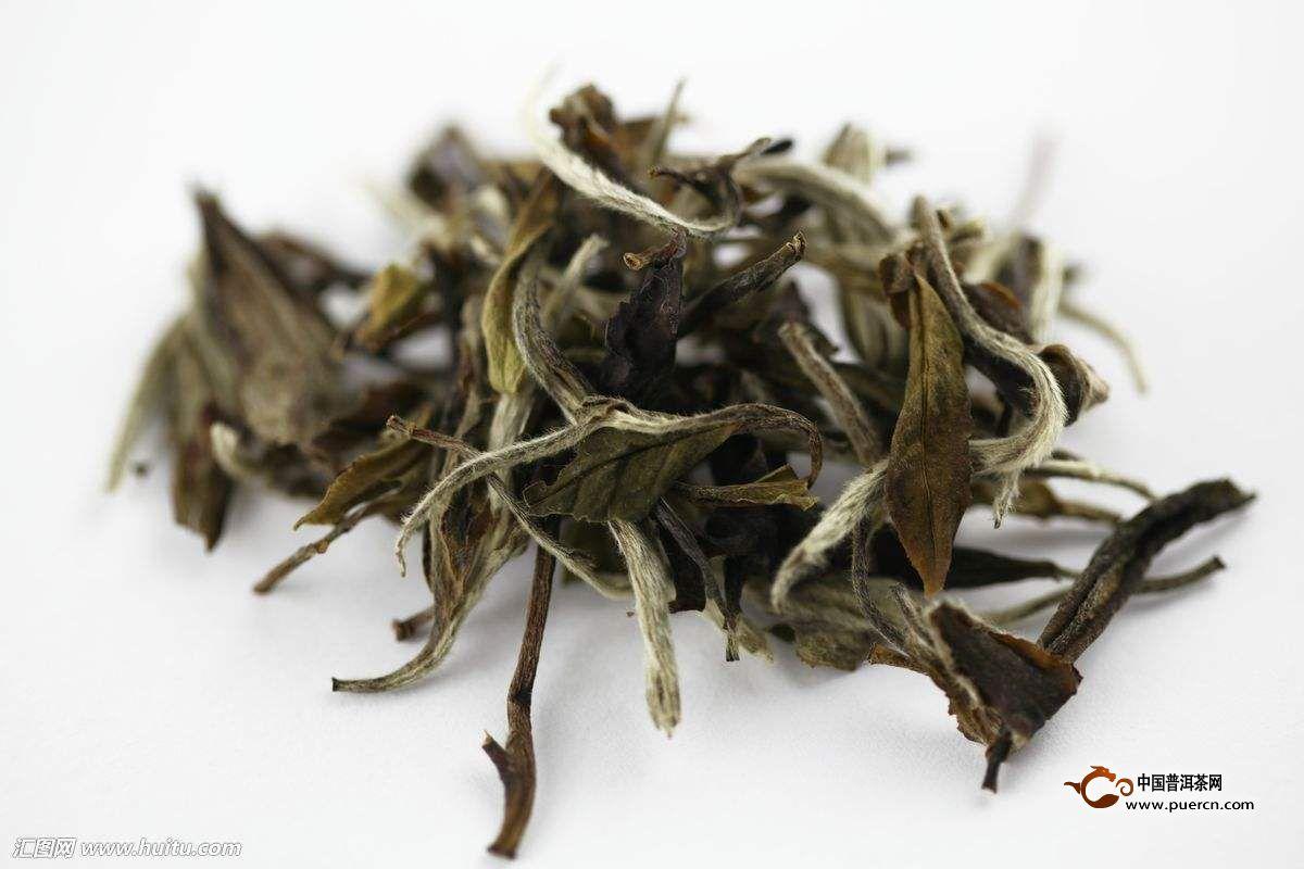 白茶属于什么茶类