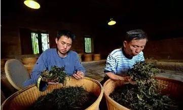 红茶制作工艺之烘焙