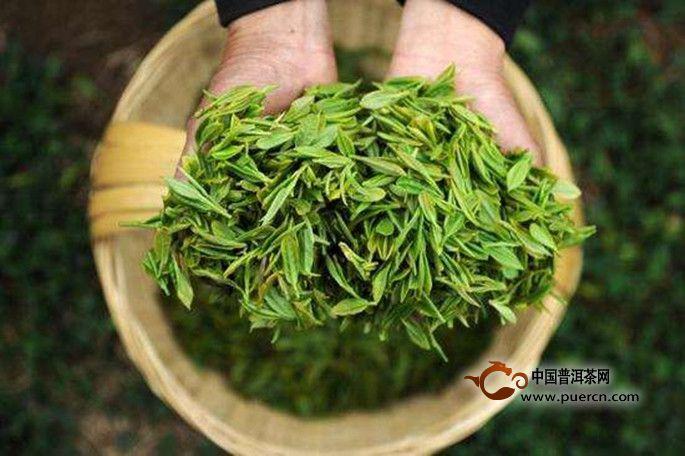 品质好的茶叶都有什么标准