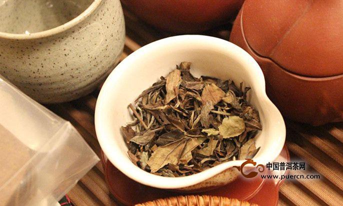 肠胃不好的人可以喝白茶吗