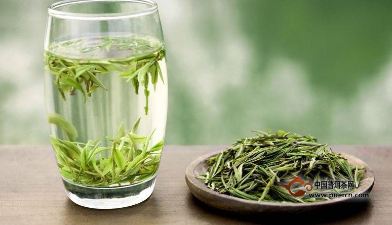 安吉白茶属于绿茶吗